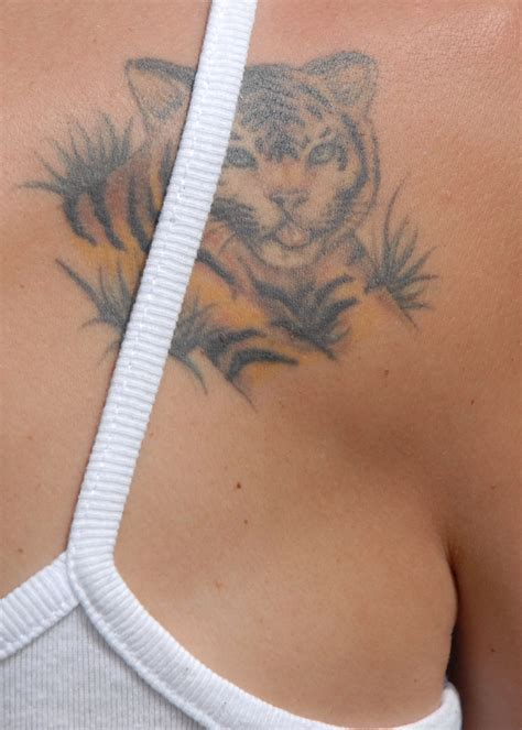 most beautiful tattoos most beautiful cat designs in the world yusrablog