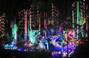 christmas lights zoo houston ideas christmas decorating