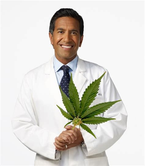 dr sanjay gupta dr sanjay gupta on cnn cannabis can work wonders
