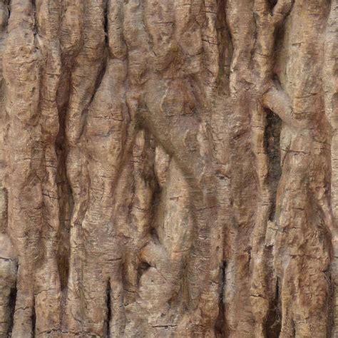 barktropical  background texture wood bark