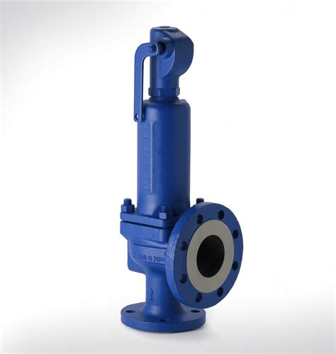 safety valve new home review