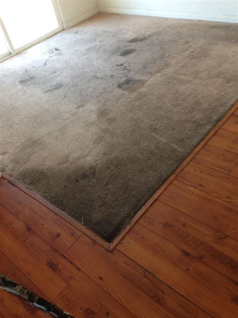 Rug Cleaning San Diego by Commercial Carpet Cleaning San Diego Pq Carpet Cleaning