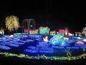 bellevue lights botanical garden garden d lights swan lake flickr photo