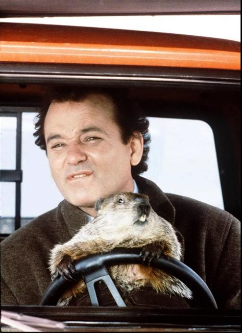 groundhog day news groundhog day coming to broadway as musical in 2017 ny