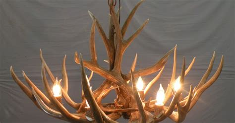 The Peak Antler Company Product Highlight Traditional How To Make A Deer Horn Chandelier