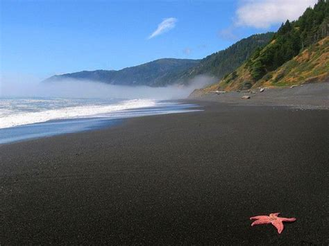 black sand beach california black sands beach shelter cove ca but i ve never seen