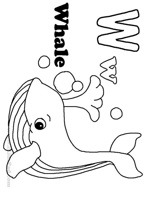 coloring pages of cute whales coloring book whale orca printable whales sperm ocean