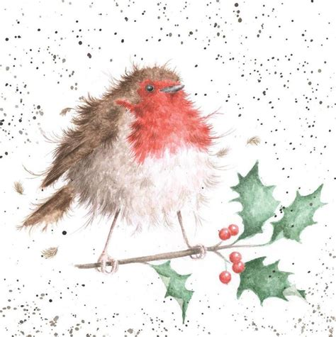 Red Robin E Gift Card - christmas robin christmas cards from national trust animals red robin pinterest