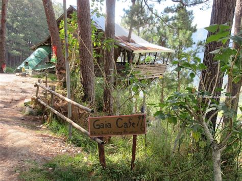 cafe gaia where to eat in sagada gaia cafe and crafts