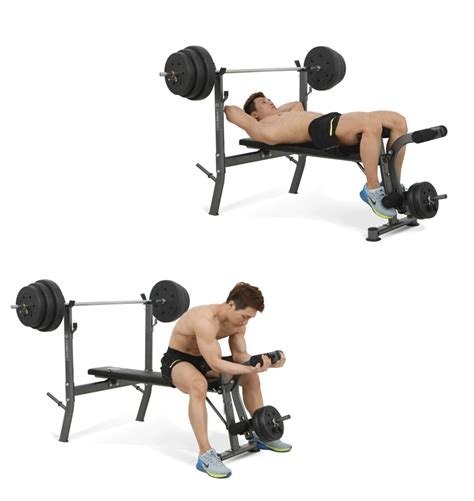 bench press calories burned fitpal multifunction weight bench