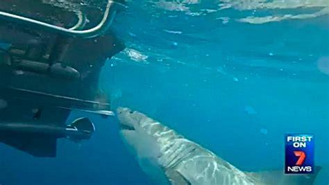 shark bites boat great white shark bites fishing boat motor santa cruz waves