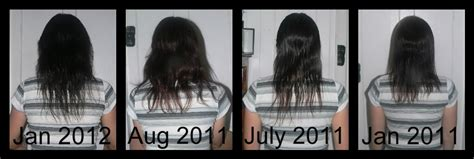 pics of hair growth in 1 year my healthy hair journey 2015 personal blog