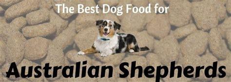 best food for australian shepherd puppy the best australian shepherd food