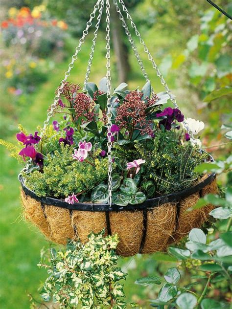 foliage plants for hanging baskets make a hanging basket hgtv