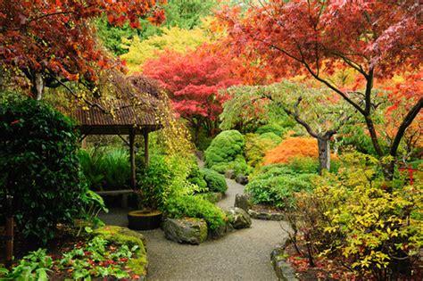 garden dreams garden dreams interpretation dictionary