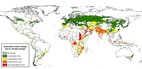 global potato insect phenology modeling and climate change