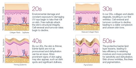 Why Do We Shed Skin by Why Skin Ages And What You Can Do About It