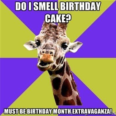 Giraffe Birthday Meme - new giraffe birthday meme 80 skiparty wallpaper