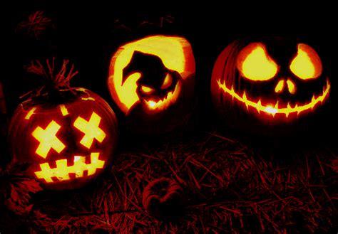 pumpkin gif giphy gif