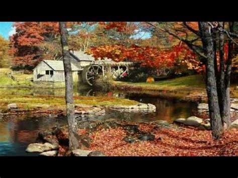 falling leaves  screensavermp youtube
