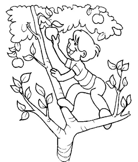 apple picking cliparts   clip art