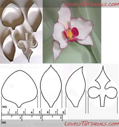 printable paper orchid pin by doricelba albarado on porcelana fria pinterest