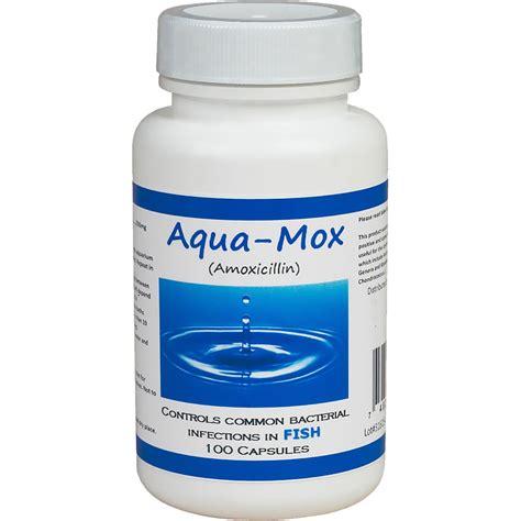 aqua mox amoxicillin mg  capsules healthypets