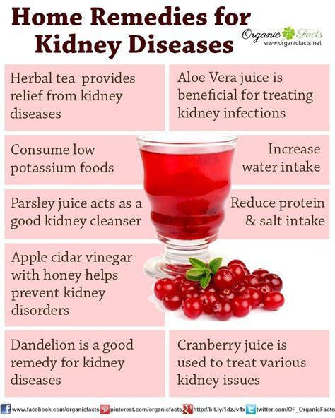 Kidney Detox Fruits by Best 25 Low Kidney Function Ideas On Kidney