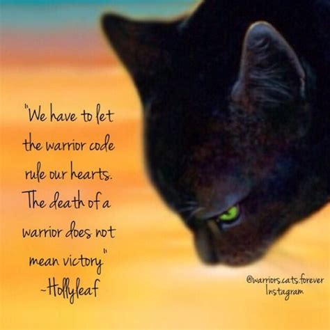 march forward from warrior to rock nine books 174 best images about hollyleaf on cats