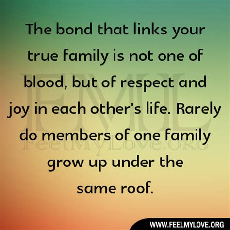 the bond that links your true family is not one of blood but of respect and joy in each other s family bond quotes quotesgram