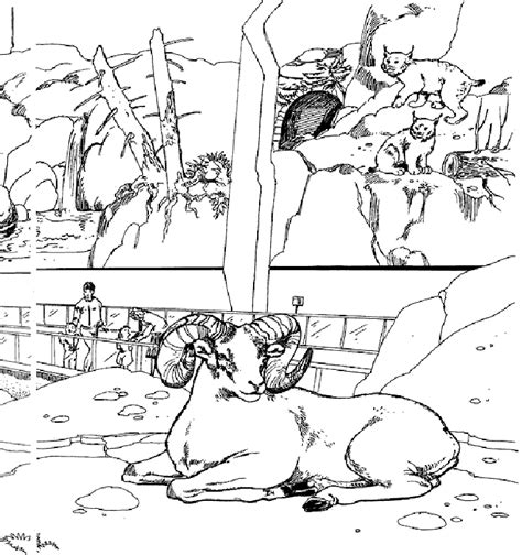zoo map coloring page printable zoo coloring pages coloring home
