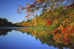 Fall foliage tickner s canoes