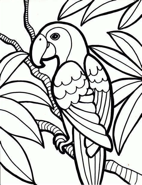 Bird Coloring Pages For Bird Coloring Pages Coloring Ville