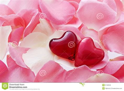 1428mb Pink Inlove hearts in stock photo image of cordate engagement 9148248