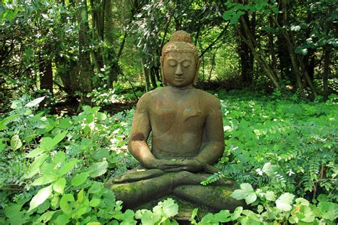 nature rest recovery stone buddha statue sculpture