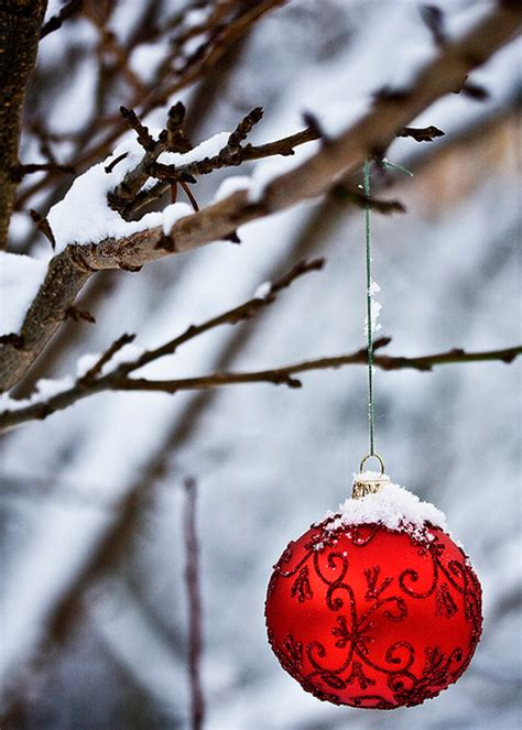 25 awesome christmas ornaments for outdoor decorations