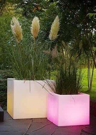 Light Up Planters by Finest Planters And Pots Planters Light Up With Remote