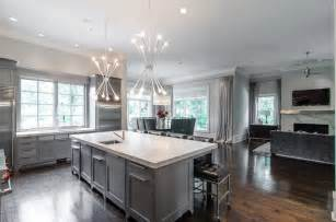 Grey Cabinet Kitchens Gray Kitchen Cabinets Modern Kitchen Pricey Pads