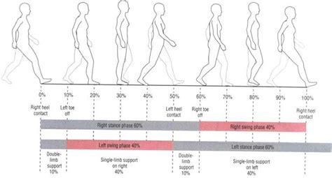 cyclic pattern definition gait training with ambulation aids