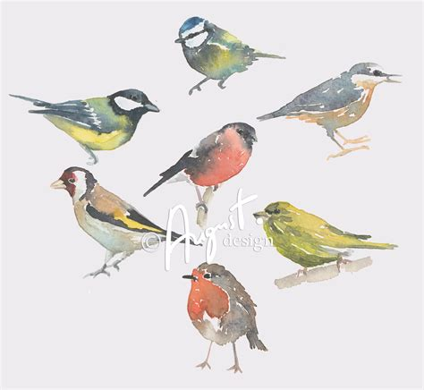 1000 ideas about watercolor bird 1000 images about watercolor birds tutorials on