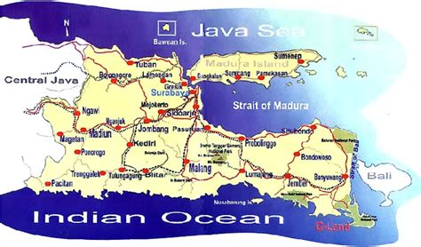 Java East welcome to east java marine and beaches location map