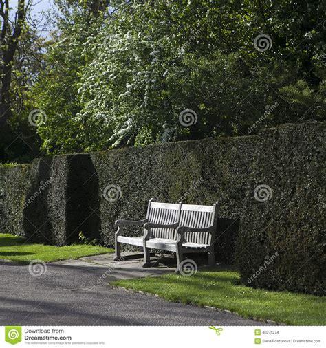 banc anglais banc en bois de jardin dans le jardin anglais photo stock