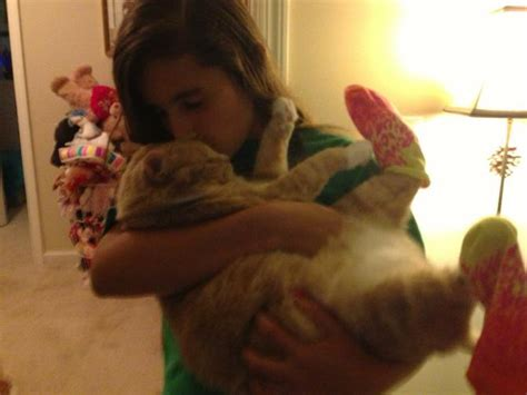 pets    kid doesn  love  dog  cat