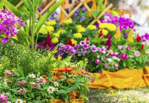 types of soil all you need to know bob vila