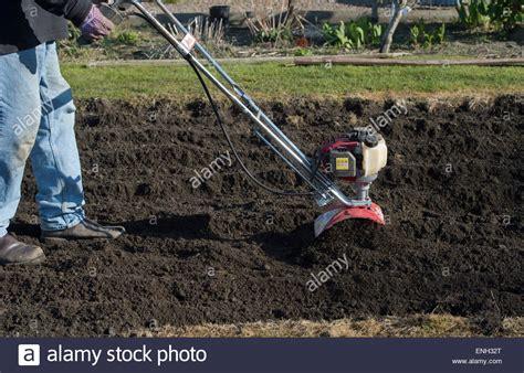 Buying Soil For Vegetable Garden Gardener Rotavating A Vegetable Garden Preparing The Soil