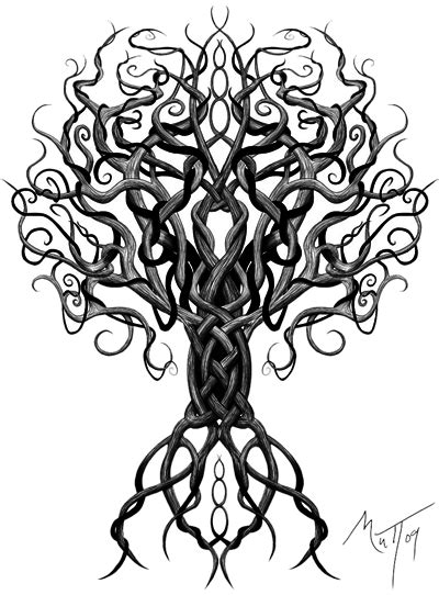 tree tattoo png download celtic tattoos free png transparent image and clipart
