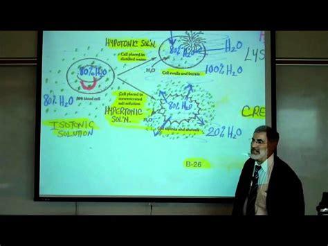 diffusion osmosis active  port  cell membranes