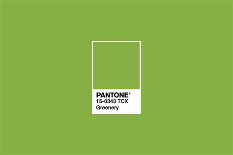 pantone color of the year 2017 announcement 100 pantone color of the year 2017 announcement