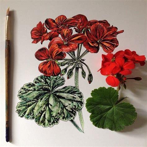 fiori per disegnare oltre 25 fantastiche idee su tutorial per disegnare fiori