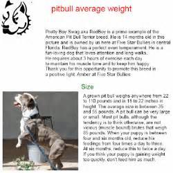 american pitbull terrier weight chart chose1ofbest weight pitbull the best pitbull average weight
